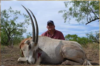 scimitar_horned_oryx.jpg